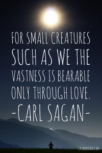 For small creatures such as we, the vastness is bearable only through love. Carl Sagan