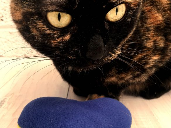 Sew a Catnip Heart for your Kitty
